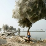 Bagaimana Mengubah Bencana Alam Menjadi Peluang Bisnis