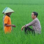 Belajar Bisnis Dari Sosok Jokowi