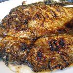 Cara Budidaya Ikan Gurame yang Mudah